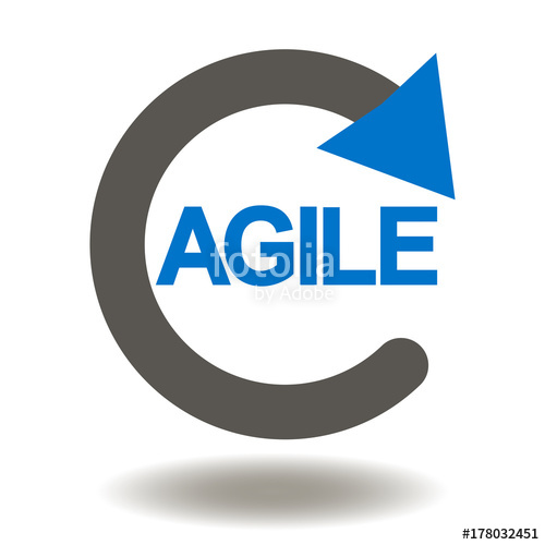 Pilot for agile project at a finance enterprise: product owner point of view
