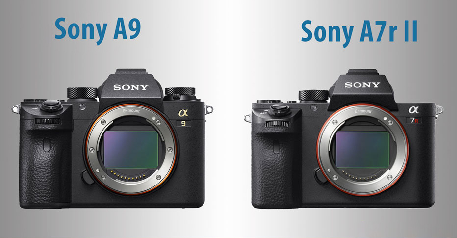 Mirrorless System - Is it for you?